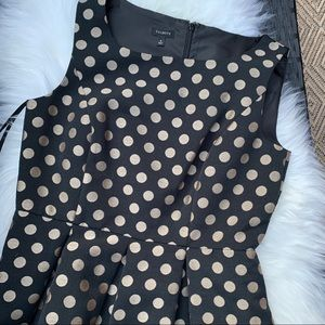 TALBOTS black and gold polka dot holiday dress 8